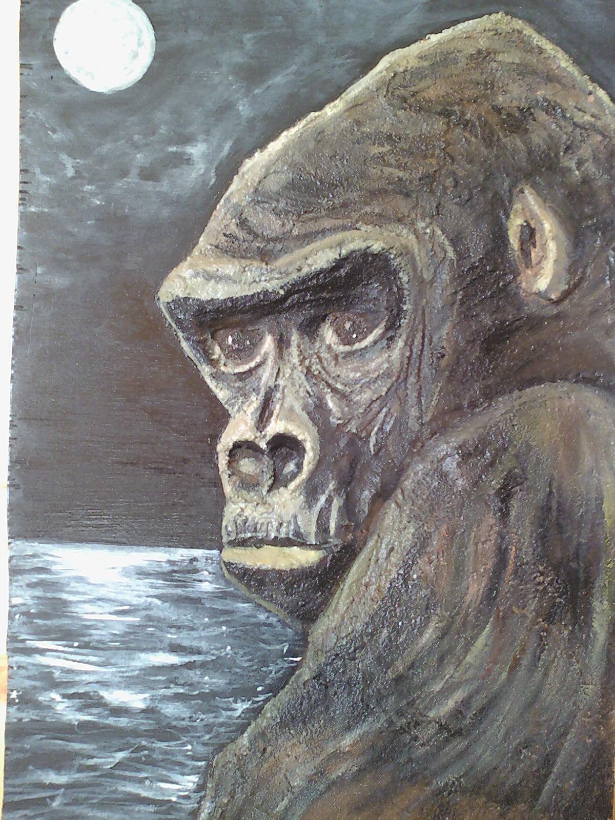 Gorille dans la nuit